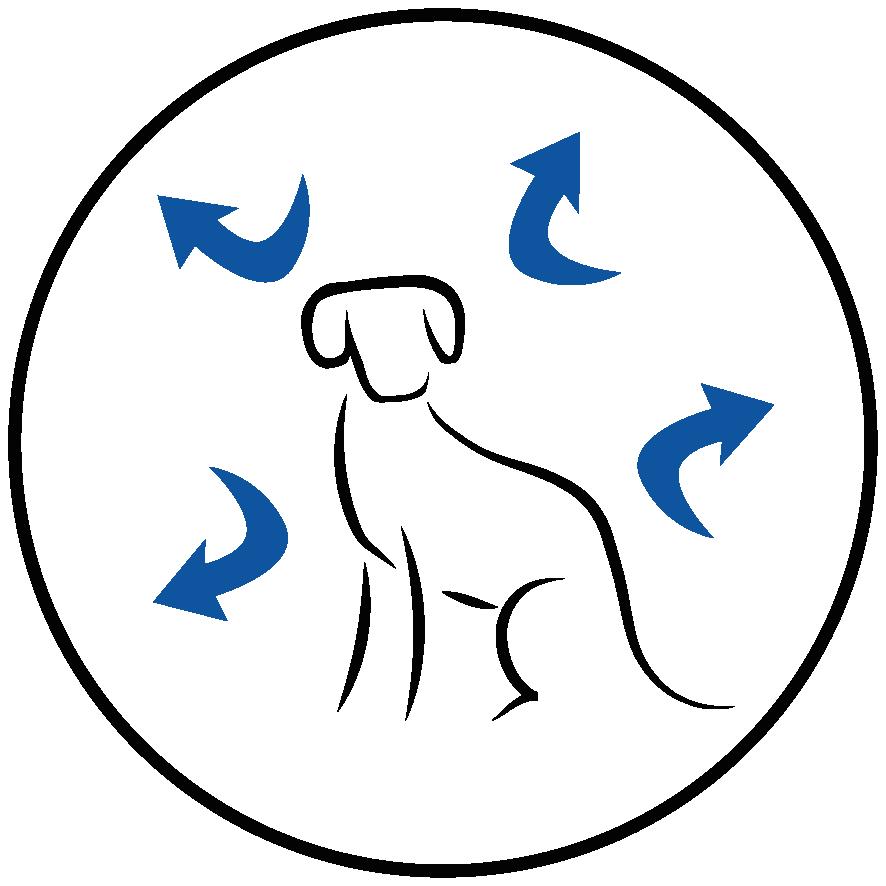 Una fuente equilibrada de ácidos grasos Ω3 y Ω6, vitaminas E y C, β-caroteno y cítricos naturales para reforzar el frágil sistema inmunitario de los jóvenes cachorros