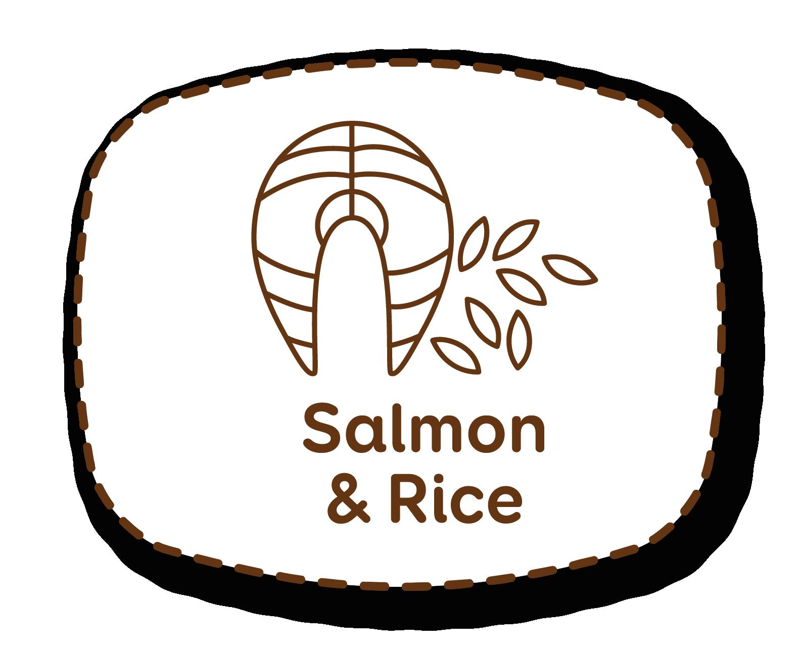 Salmón y arroz: ingredientes perfectos para gatos con apetito caprichoso y sensibilidad digestiva.