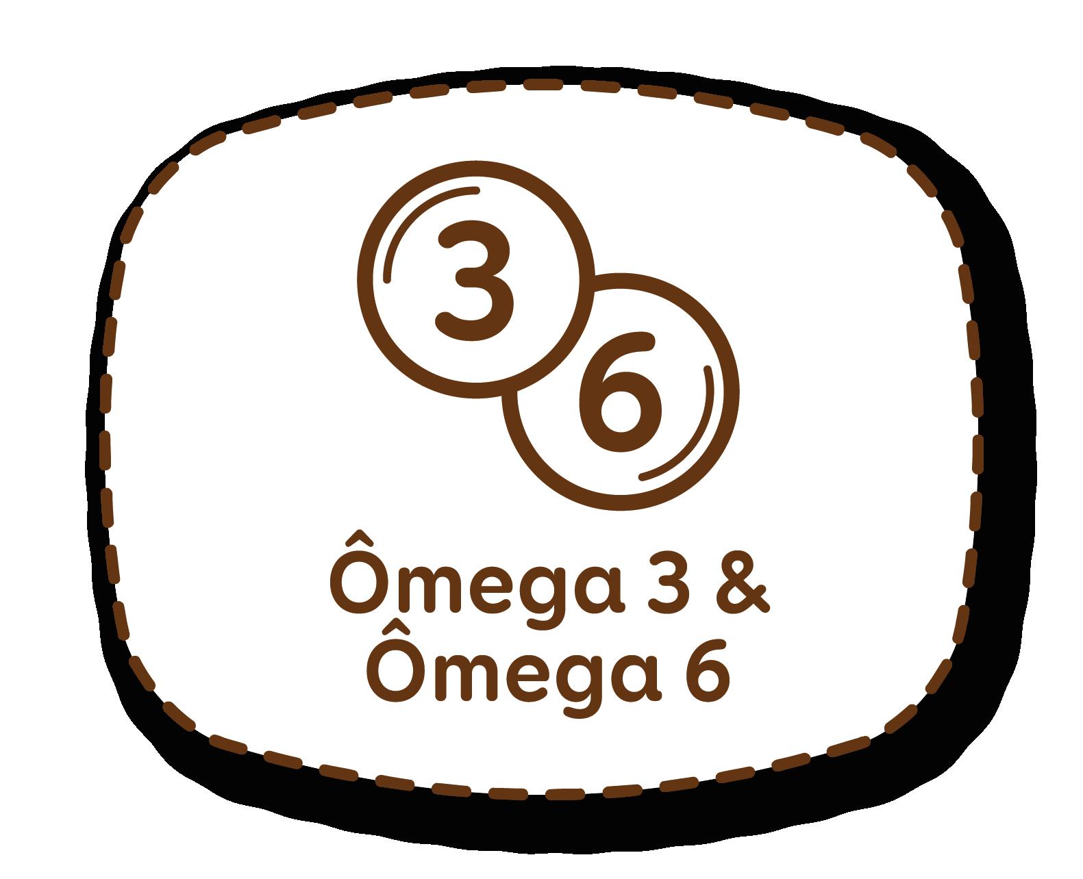 Omega3 & Omega6