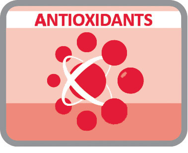 Con antioxidantes para retrasar el envejecimiento celular