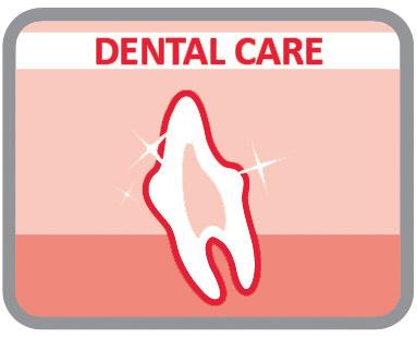 Favorecen la masticación para mantener los dientes limpios y sanos