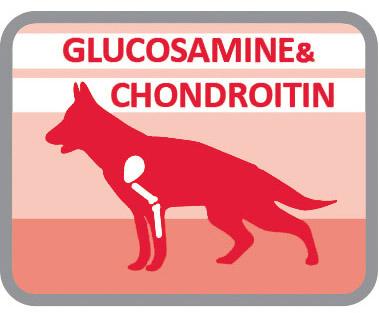 Para el cuidado de las articulaciones por la combinación de la condroitina y la glucosamina