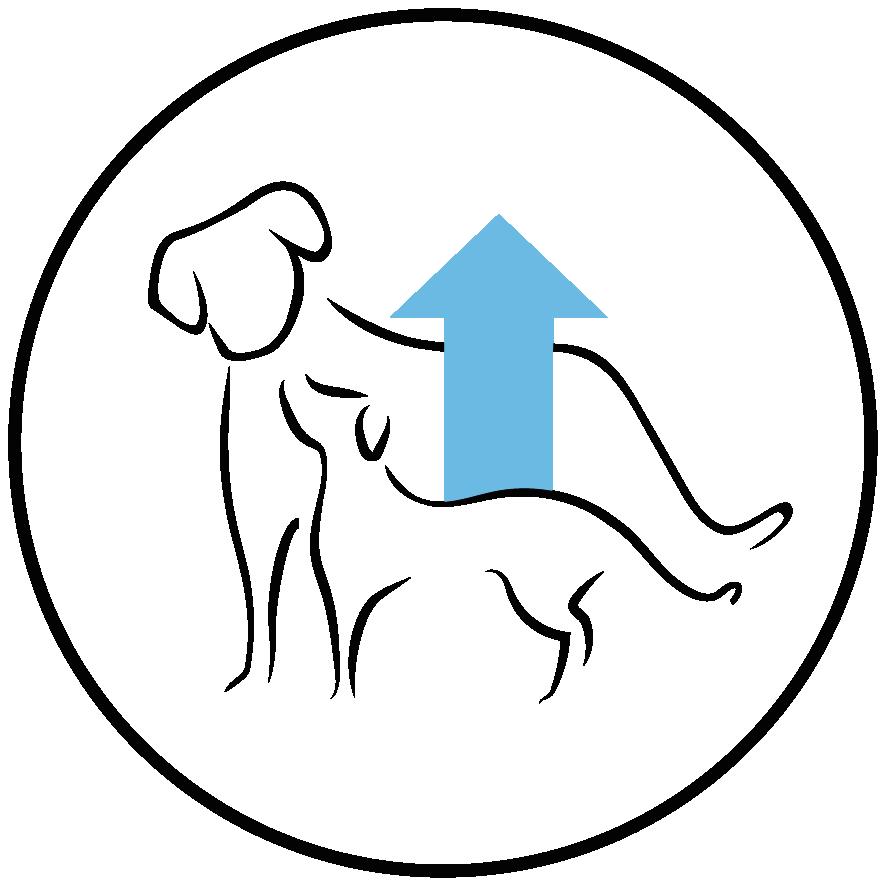 Rico en proteína y grasas animales para proporcionar la energía y nutrientes suficientes para cachorros en crecimiento