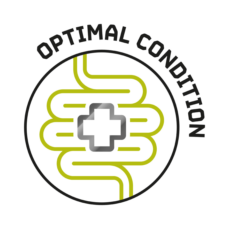 Optimal Condition
